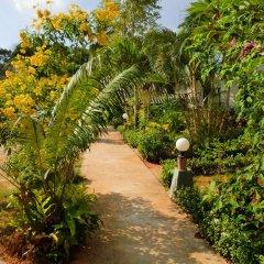 Отель The Krabi Forest Homestay фото 7