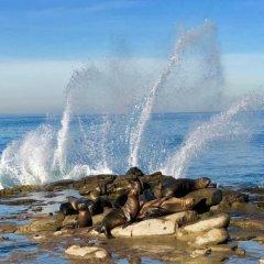 Отель La Quinta Inn & Suites San Diego SeaWorld/Zoo Area пляж