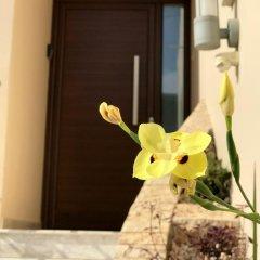 Апартаменты Amazing Napa Apartments интерьер отеля фото 2
