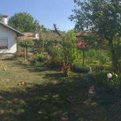 Отель House Gabri Болгария, Тырговиште - отзывы, цены и фото номеров - забронировать отель House Gabri онлайн фото 2
