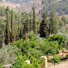 Отель Tur Sinai Organic Farm Resort Иерусалим фото 9