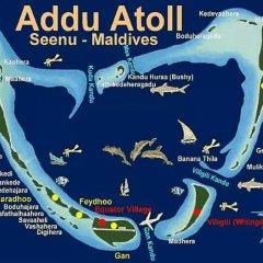 Отель Charming Holiday Lodge Мальдивы, Хулхудху (Атолл Адду) - отзывы, цены и фото номеров - забронировать отель Charming Holiday Lodge онлайн Хулхудху (Атолл Адду) спортивное сооружение