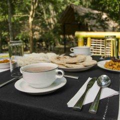 Отель Ella Jungle Resort Шри-Ланка, Бандаравела - отзывы, цены и фото номеров - забронировать отель Ella Jungle Resort онлайн питание