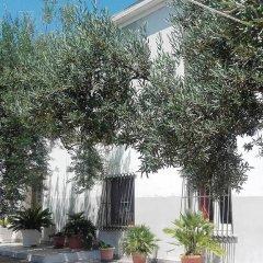 Отель B&B Stella dell'Adriatico Ортона фото 2