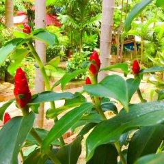 Отель Kantiang Oasis Resort & Spa фото 14