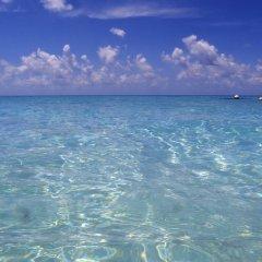 Отель Fafarua Ile Privée Private Island Французская Полинезия, Тикехау - отзывы, цены и фото номеров - забронировать отель Fafarua Ile Privée Private Island онлайн пляж