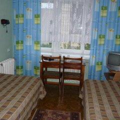 Гостиница Спутник Номер Бизнес с разными типами кроватей фото 2