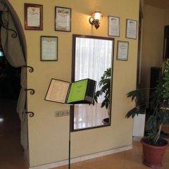 Гостиница Олеся интерьер отеля фото 2