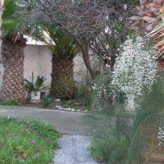 Отель Dolphin Apartments Греция, Родос - отзывы, цены и фото номеров - забронировать отель Dolphin Apartments онлайн фото 2
