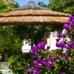 Hotel Cernia Isola Botanica Марчиана фото 6