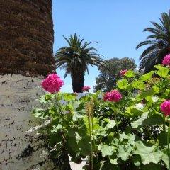 Отель Villa Margarit Албания, Саранда - отзывы, цены и фото номеров - забронировать отель Villa Margarit онлайн фото 3