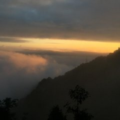 Rema Resort in Paro, Bhutan from 93$, photos, reviews - zenhotels.com photo 6