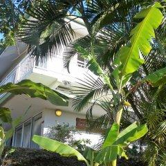 Отель Fare Suisse Tahiti Французская Полинезия, Папеэте - отзывы, цены и фото номеров - забронировать отель Fare Suisse Tahiti онлайн фото 2