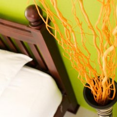 Отель Spa Guesthouse 2* Номер Делюкс с различными типами кроватей фото 2