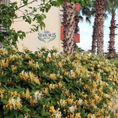 Semoris Hotel фото 17