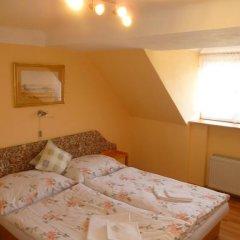 Отель Chebsky dvur - Egerlander Hof 3* Стандартный номер с различными типами кроватей фото 6