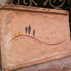 Отель La Vite In Castello Монтескудаио удобства в номере