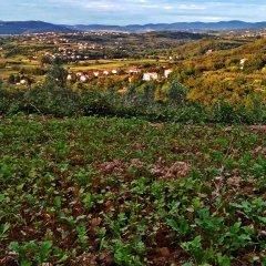 Отель Farm stay Domačija Butul фото 8