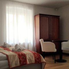 Hotel Jana / Pension Domov Mladeze Люкс повышенной комфортности с различными типами кроватей