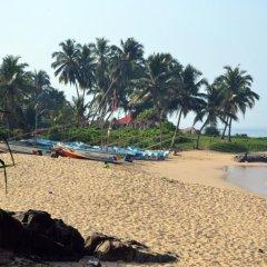Отель Morning Sun Homestay пляж фото 2