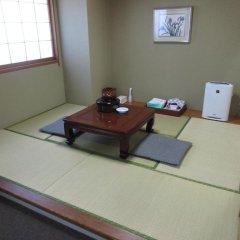 Nogi Onsen Hotel Насусиобара удобства в номере