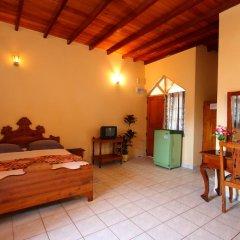 Отель Paradise Holiday Village Стандартный номер с различными типами кроватей фото 8