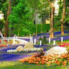 Old City Family Hotel Турция, Стамбул - отзывы, цены и фото номеров - забронировать отель Old City Family Hotel онлайн фото 2