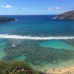 Stay Hotel Waikiki пляж