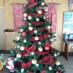 Отель Hibiscus Французская Полинезия, Муреа - отзывы, цены и фото номеров - забронировать отель Hibiscus онлайн интерьер отеля фото 3