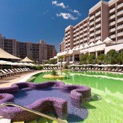 Отель Bulgarienhus Royal Beach Apartments Болгария, Солнечный берег - отзывы, цены и фото номеров - забронировать отель Bulgarienhus Royal Beach Apartments онлайн бассейн