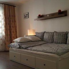 Отель Apartman Sofije Чехия, Карловы Вары - отзывы, цены и фото номеров - забронировать отель Apartman Sofije онлайн комната для гостей фото 4