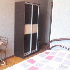 Гостиница Mini-Otel Garibaldi Стандартный номер с двуспальной кроватью фото 2