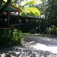 Отель Colo-I-Suva Rainforest Eco Resort 3* Стандартный номер фото 16