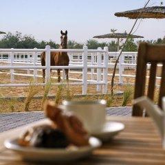 Отель Anantara Al Sahel Villa Resort фото 4