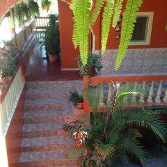 Отель Marjenny Гондурас, Копан-Руинас - отзывы, цены и фото номеров - забронировать отель Marjenny онлайн фото 12