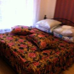 Гостиница Айс Черри Домбай Стандартный номер с двуспальной кроватью фото 27