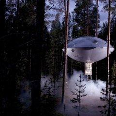 Tree Hotel фото 6
