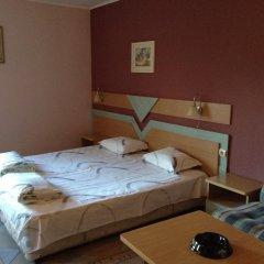 Отель Family Hotel Evropas Болгария, Сандански - отзывы, цены и фото номеров - забронировать отель Family Hotel Evropas онлайн комната для гостей фото 4
