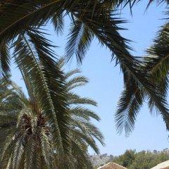 Отель Fonda Las Palmeras пляж фото 2