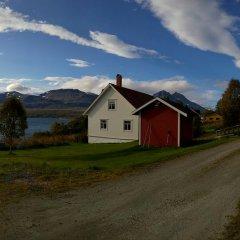 Отель Bustad Норвегия, Тромсе - отзывы, цены и фото номеров - забронировать отель Bustad онлайн фото 2