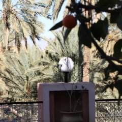 Отель La Vallée Марокко, Уарзазат - отзывы, цены и фото номеров - забронировать отель La Vallée онлайн приотельная территория