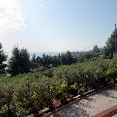 Отель Panorama House Греция, Ситония - отзывы, цены и фото номеров - забронировать отель Panorama House онлайн фото 14