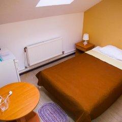 Гостиница Хозяюшка 3* Стандартный номер с различными типами кроватей фото 3