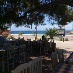 Отель Marina Hotel Греция, Ситония - отзывы, цены и фото номеров - забронировать отель Marina Hotel онлайн питание