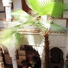 Отель Dar Al Kounouz Марокко, Марракеш - отзывы, цены и фото номеров - забронировать отель Dar Al Kounouz онлайн фото 15