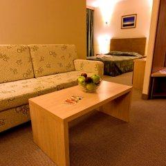 Vitosha Park Hotel 4* Стандартный номер разные типы кроватей фото 4