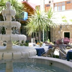 Гостиница Фламинго 2 фото 2