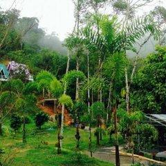 Отель Phuphasrirung Resort