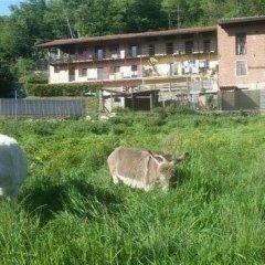 Отель Bed & Breakfast Varionda Италия, Кьяверано - отзывы, цены и фото номеров - забронировать отель Bed & Breakfast Varionda онлайн с домашними животными