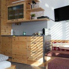 Отель Tischlmühle Appartements & mehr Студия с различными типами кроватей фото 8